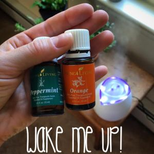 Since working is not optional I use a combo of peppermint and orange essential oils in my diffuser to pick me up when I want to take a nap in the afternoon. You should get in on this!